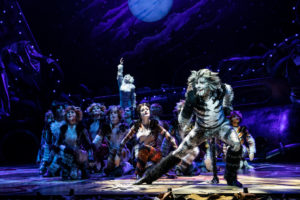Dan Hoy as 'Munkustrap' and the North American Tour of CATS. Photo by Matthew Murphy (2019)