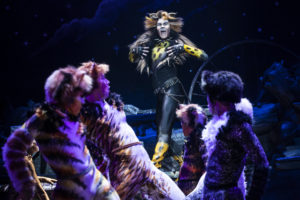 McGee Maddox as 'Rum Tug Tugger' and the North American Tour Company of CATS. Photo by Matthew Murphy (2019)